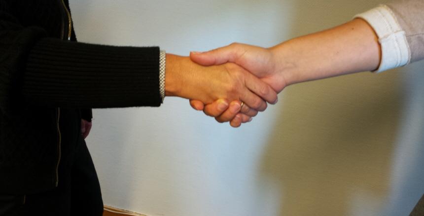 Två personer som tar varandra i hand och hälsar på varandra, endast armarna syns