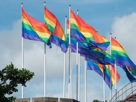 Pride flaggor