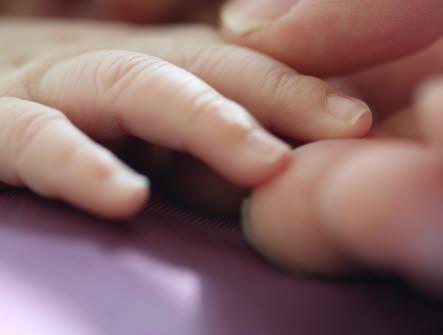 Hand, vuxenhand håller i barnhand, liten, stor, tillsammans, vuxen, sällskap, förälder, föräldraskap, framtid, leda, nagel, naglar, fingrar, hålla, mamma, pappa, barn, kontakt