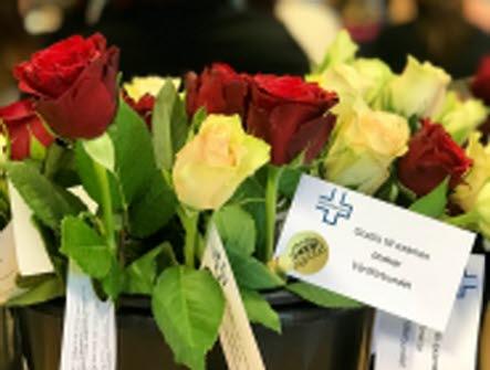 Rosor med ett kort i varje blomma som det står Grattis till examen önskra Vårdförbundet